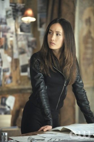 Maggie Q, Nikita